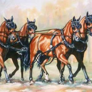 Four Carriage Horses Trotting