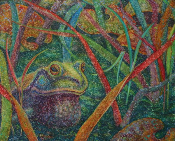 Watercolor painting of bullfrog in reeds