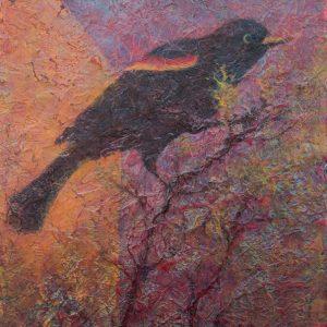 Red Winged Blackbird on branch