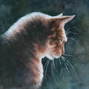 Watercolor painting of backlit cat