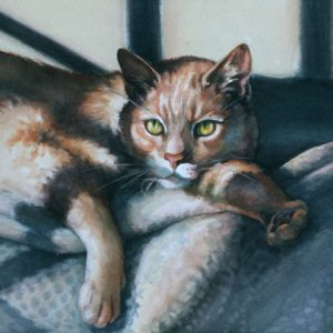 Watercolor painting of lounging cat