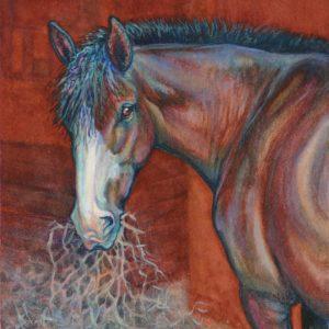 Artist Robyn Ryan equine portrait