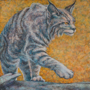 """Bobcat"" Acrylic Layers Painting by VA Artist Robyn Ryan"