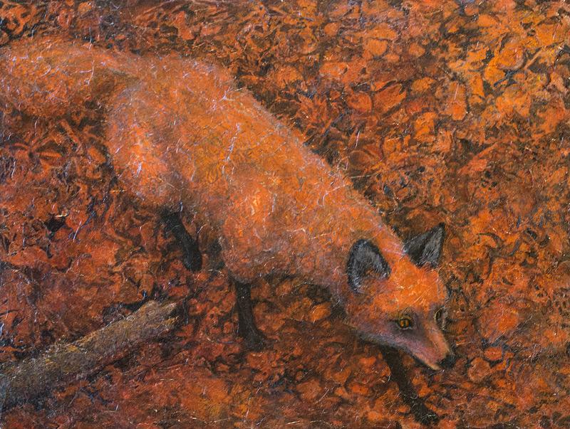 Fox walking through leaves