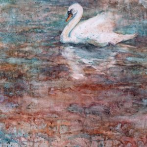 Watercolor painting of Swan