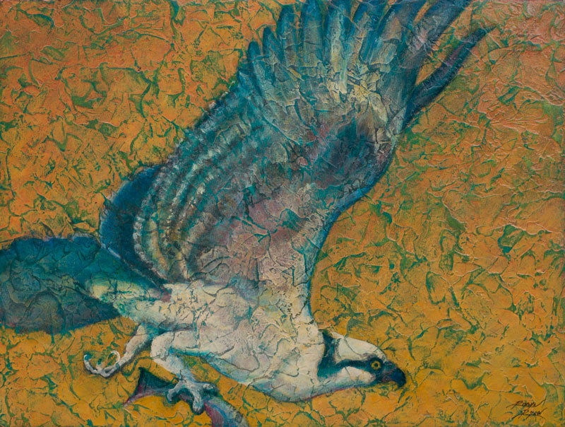 Osprey Acrylic Layers painting by VA artist Robyn Ryan