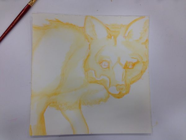 Preliminary drawing of Fox by Artist Robyn Ryan
