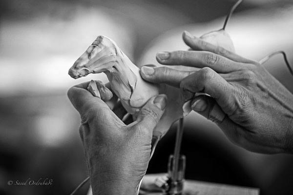 Robyn Ryan Sculpting Hands