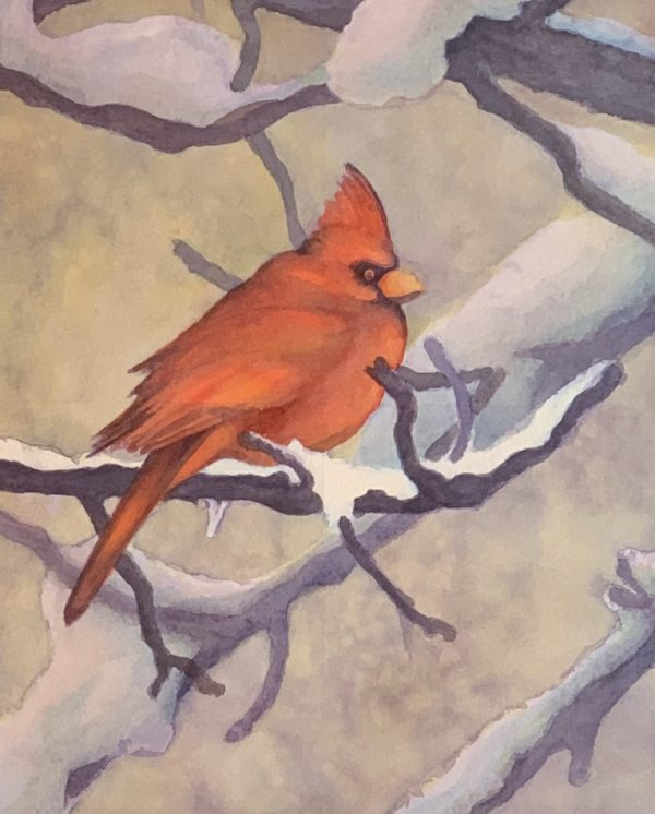 Cardinal in Snow Watercolor painting by Robyn Ryan